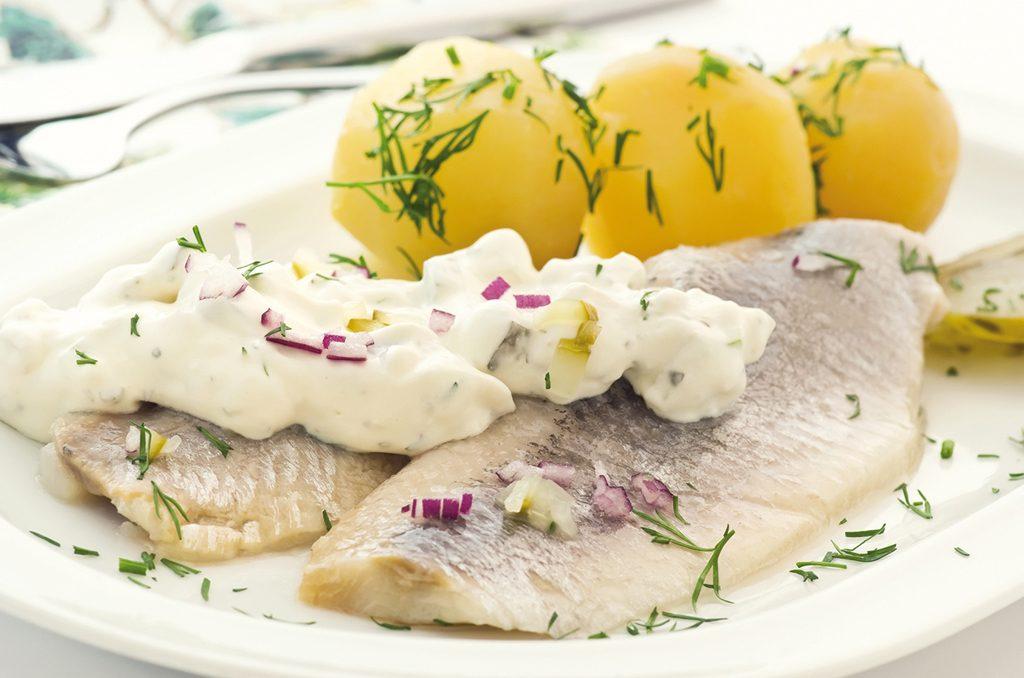 Ist Matjes Roher Fisch
